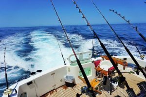 New state-of-the-art Shimanoreels and graphite rods